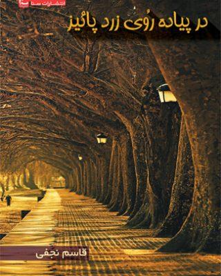 در پیاده روی زرد پاییز